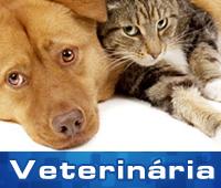 Saúde Pet - Clinica Veterinária em Guarujá