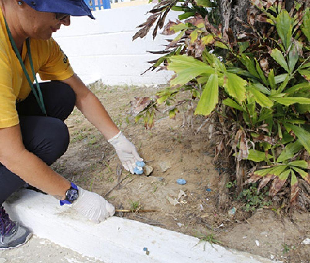Prefeitura avança com serviços de desratização na próxima semana